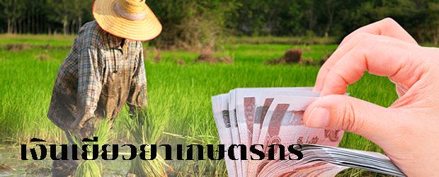 ลงทะเบียนเงินเยียวยาเกษตรกรหรือเช็คเงินเยียวยาเกษตรกรล่าสุดรอบ 3 ปี 2564/2021
